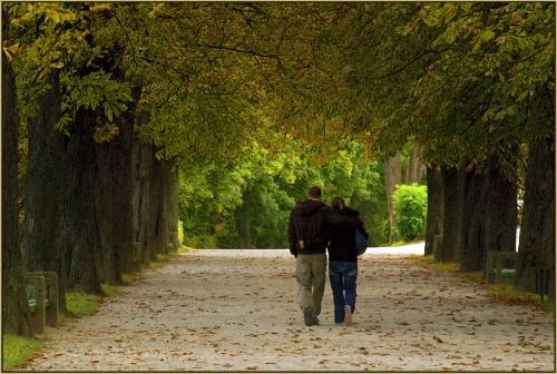 http://cdn3.grupos.emagister.com/imagen/caminando_juntos_367291_t0.jpg