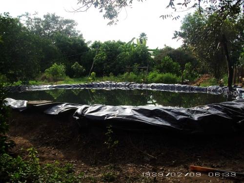 imagen estanque cubierto de plastico