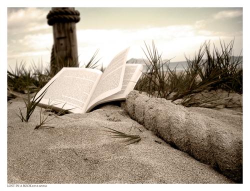 http://cdn3.grupos.emagister.com/imagen/libro_en_la_playa_168155_t0.jpg